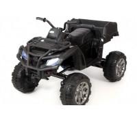 Электроквадроцикл Barty Grizzly Next Т009МР черный